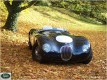 Auta - Jaguar C - Type 1951
